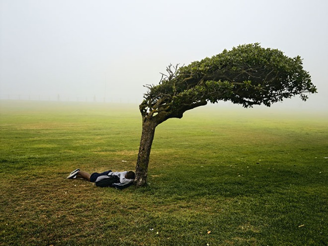 Pieter Hugo - Green Point Common, Le Cap, 2013