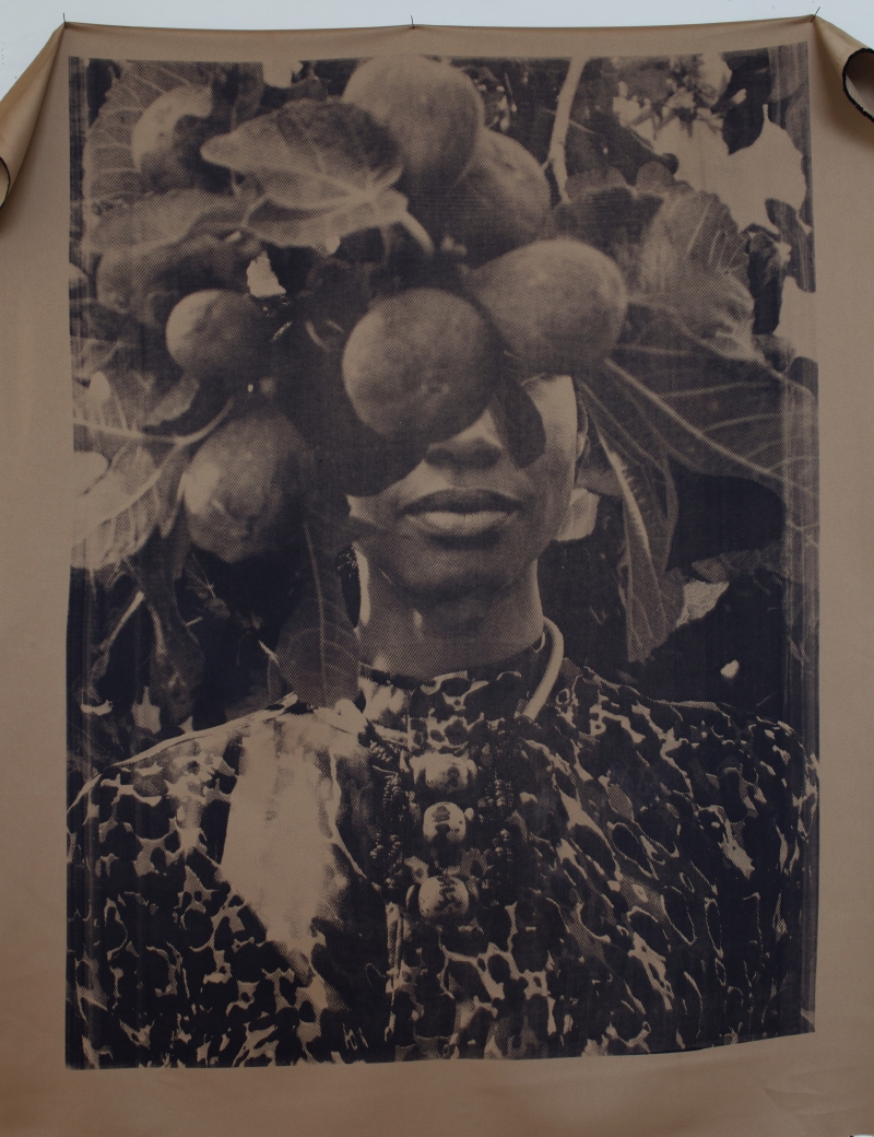 Zohra Opoku, Ficus Carica, 2015, Screen-print on textile, 79 x 105 cm, courtesy the artist and Gallery 1957, Accra